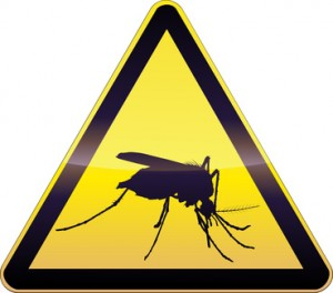 Mosquito Misting Systems - Mosquito Protection