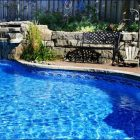 Rid your pool area from pests